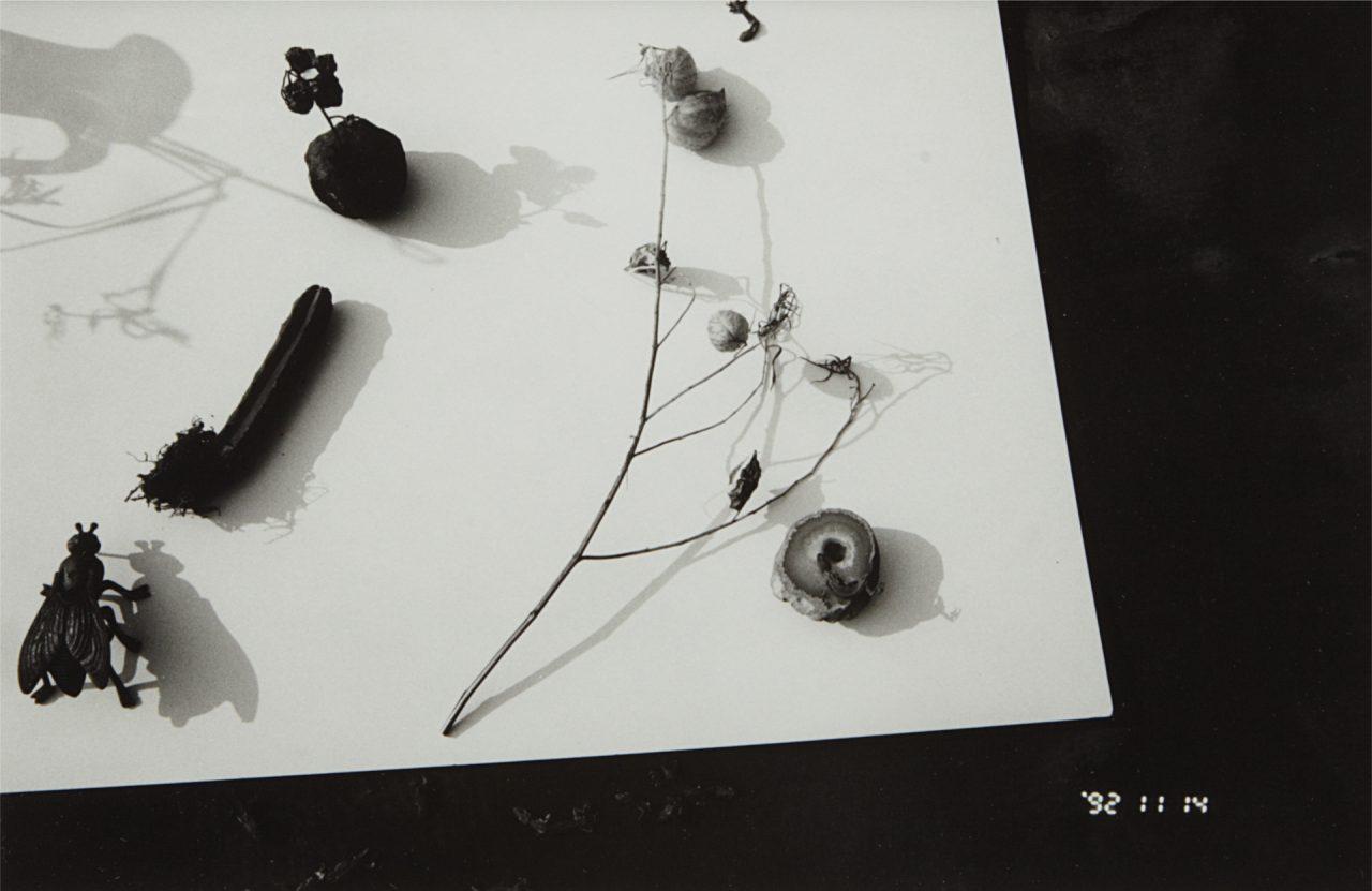 Na 2003 012