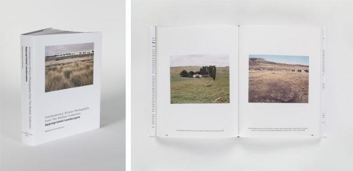 Steidl Catalog Corinne Diserens Appropriated Landscapes 2011 Preview